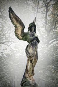 Angel_01
