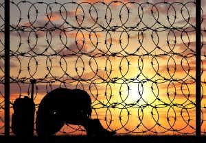 Silhouette Despair refugee woman