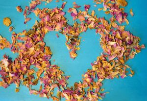 Heart of dried petals of tea rose on blue background