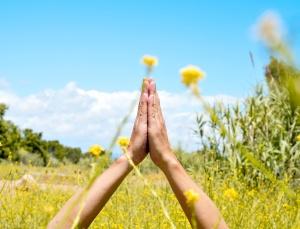 meditating in a spring field