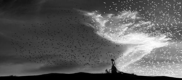 Daylight Angel banishes night