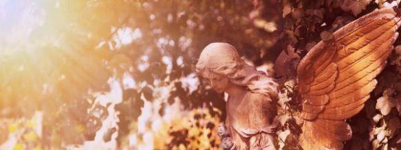 misty angel